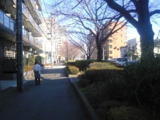 千川通り.jpg