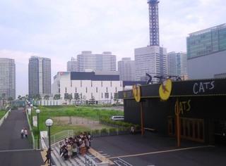 横浜CATS.JPG