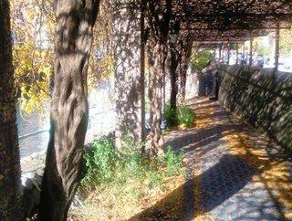 運河沿いの道.JPG